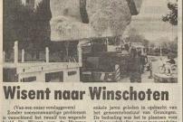 19800603 Nieuwsblad van het Noorden- Wisent naar Winschoten