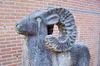 Ram in Oosterwolde